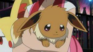 Pokémon XY&Z008 ~ Il Pokémon Evoluzione si sente deluso