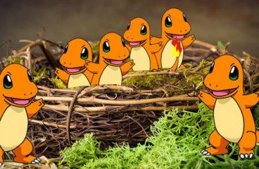 Migrano i Pokémon dei nidi di Pokémon GO! Scopriamo cosa è cambiato!