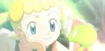 mollicino xyz pokémon