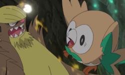 """Riassunto del nono episodio di Pokémon Sole e Luna: """"Il Pokémon Dominante Gumshoos!"""""""