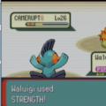 Completato Pokémon Versione Smeraldo in meno di tre ore e con soli due Pokémon!