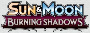 Burning Shadows