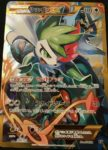 shaymin volante the best of XY