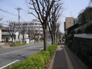 Machida City 2