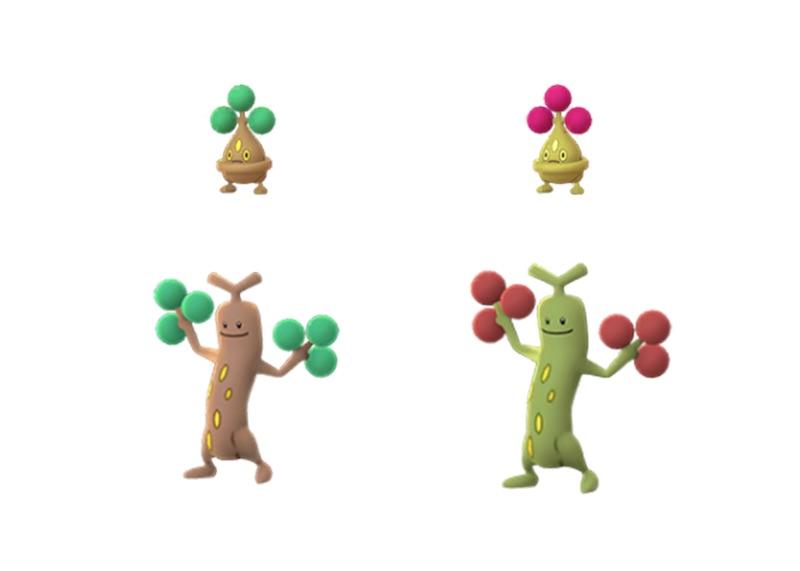 Bonsly cromatico sarà disponibile nei Pacchi amicizia