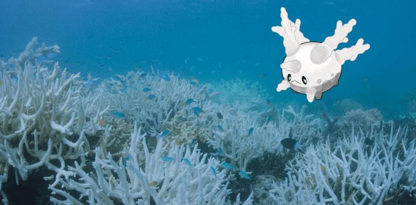 Corsola osserva la Barriera corallina morente a causa dell'inquinamento dell'ambiente